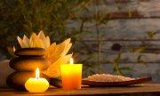 Aromatherapie bei Tieren Foto: ©  Lukas Gojda @ shutterstock